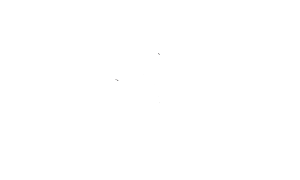 Bone Hook named by River and Wolf