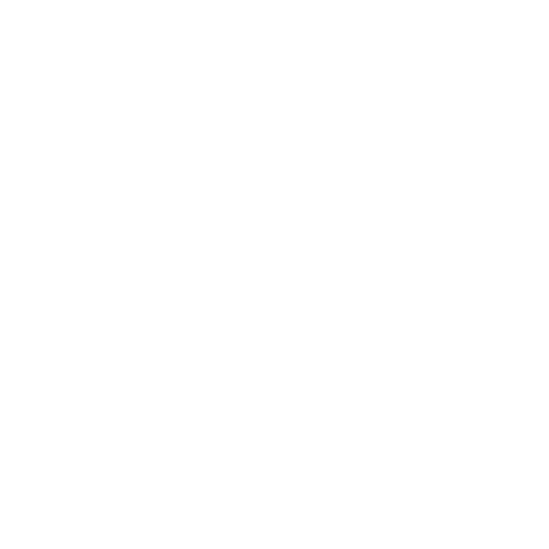 The Record News
