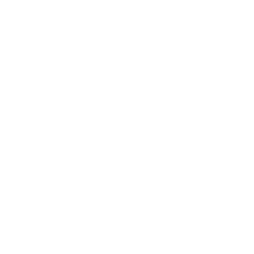 Focus created by River and Wolf