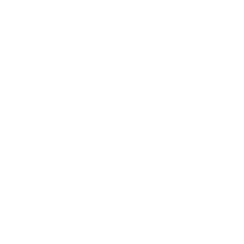 Outshine named by River and Wolf