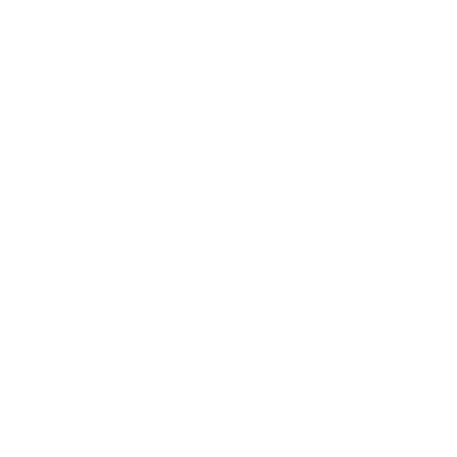 Art + Logic named by River and Wolf