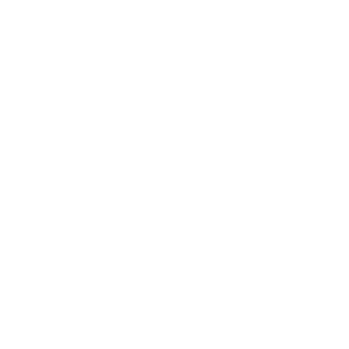 Artist 21 named by River and Wolf